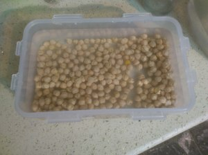 Chickpeas in water
